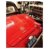 1962 MG - Back