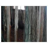 Twine from Barn
