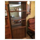 Mirrored Bookcase