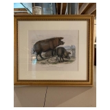 PAIR OF WILD BOAR & SOW LITHOGRAPHS  23X21 $300 PR
