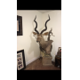 WOODSTOCK AUCTION: GUNS, AMMO, TAXIDERMY, TOOLS, FISHING TACKLE, KNIVES