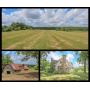 HOME, BARN, PONDS & 78 Ac in 8 TRACTS (ADJOINING CUMBERLAND MTN STATE PARK)