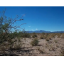 40 acres in Luna County, NM w/Govt Land all around