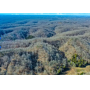 Charter Creek 14.2 Acre Wooded Kentucky Lot with Power, Water & Phone