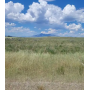 DROPPED $1200: LEMAY ISLAND RD TEN ACRE LOT NEXT TO 640 UTAH STATE LANDS