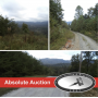 Absolute Online Auction- 272 Ac. in 21 tracts adjoin Land Conservancy with easy access to the TWRA