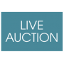 VAN BYARS WELCOME BACK LIVE GALLERY AUCTION SAT JUNE 20TH 2020
