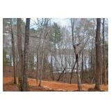 Lake Wateree 0.7+/- Acre lot Online Auction