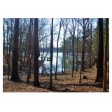 Lake Wateree 3.49+/- Acres Online Auction