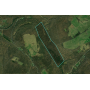 1,315 Acres Minerals & 80 Surface Acres