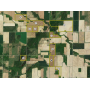 March 9th (Tuesday) 1,165 Acres in (16) Tracts of Prime, Tiled Farmland in Huron Co. and Sanilac Co.