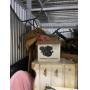 Safeguard Self Storage of Tacony, PA