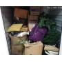 U-Haul Moving and Storage of Douglasville, GA