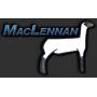 MacLennan Ewe Lamb Sale 2