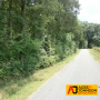 Puckett Rd Watertown TN 2 Tracts